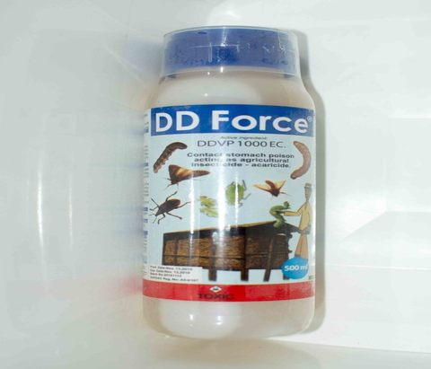 DD Force